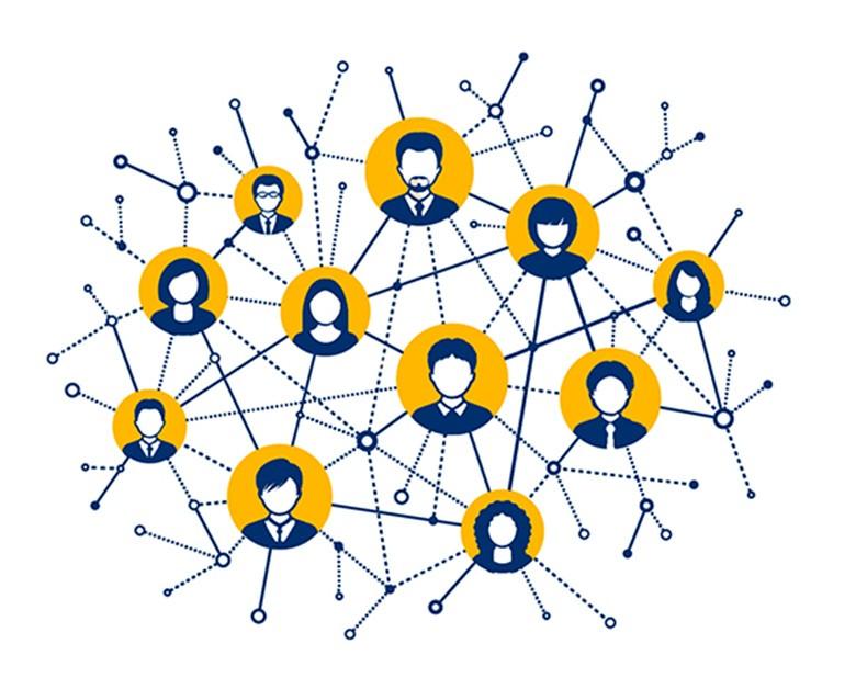 1501077931-network